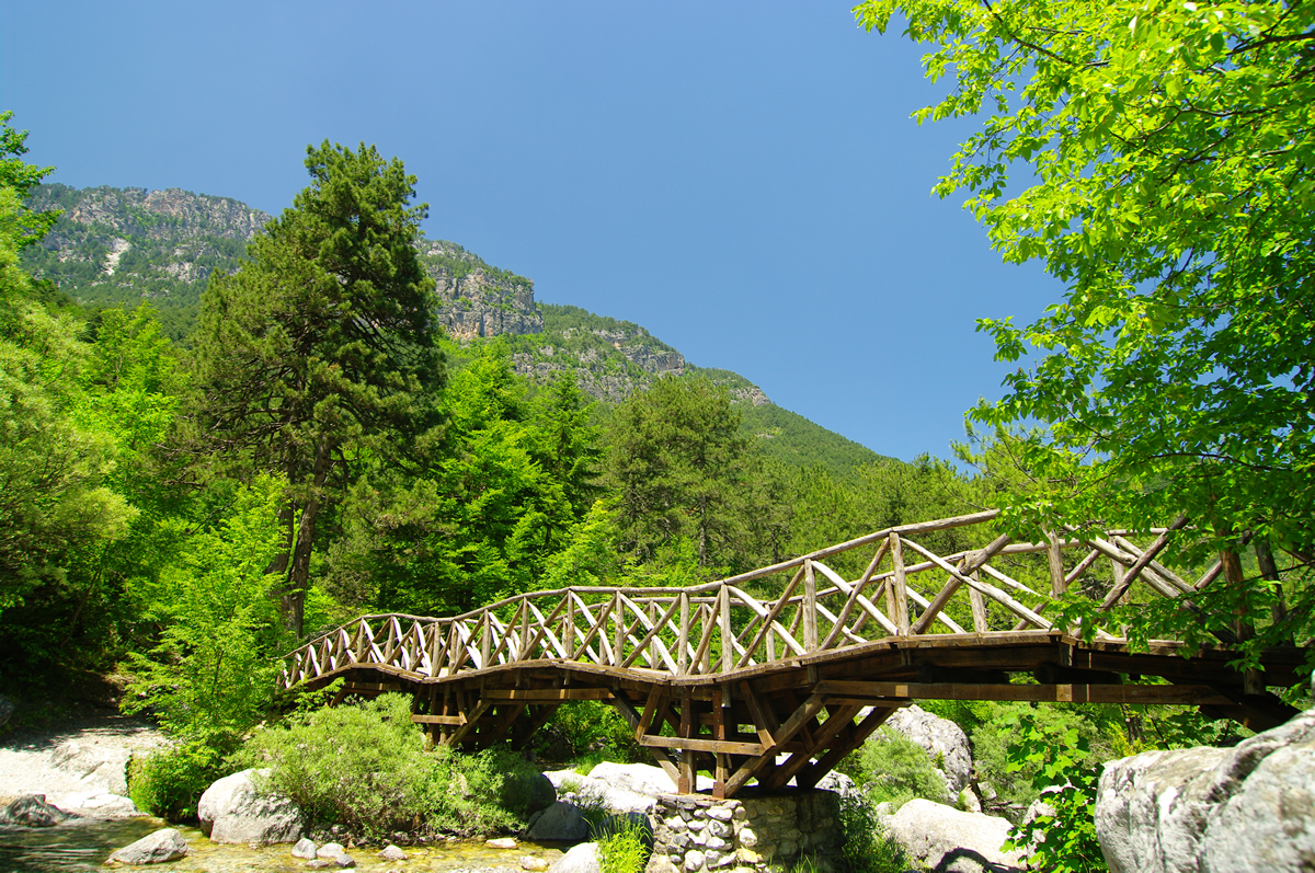 Olympus mountain in Greece in the summer