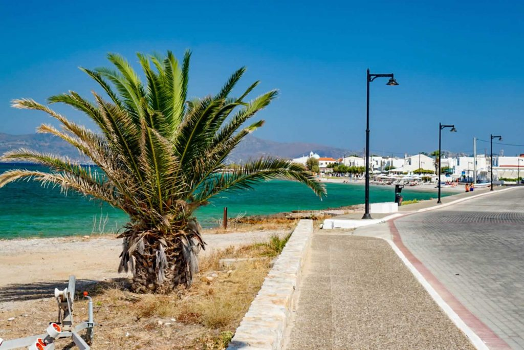 Greek island promenade with dwarf palm tree