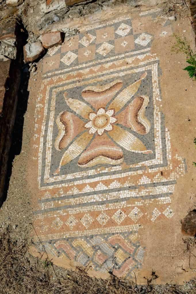 dion greece mosaic flower