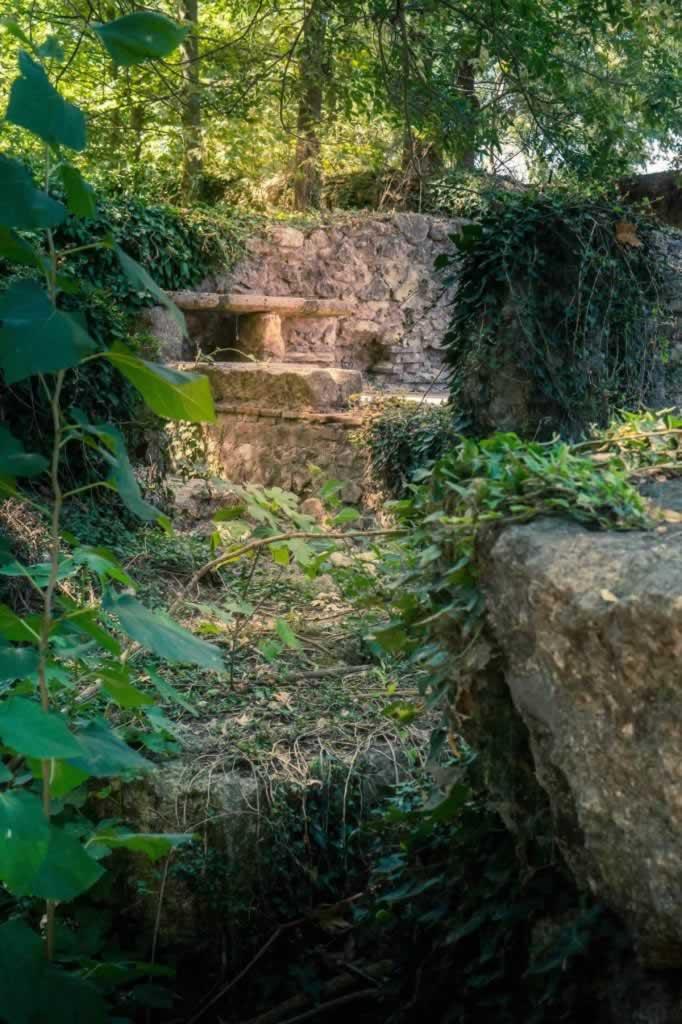 dion greece path ivy