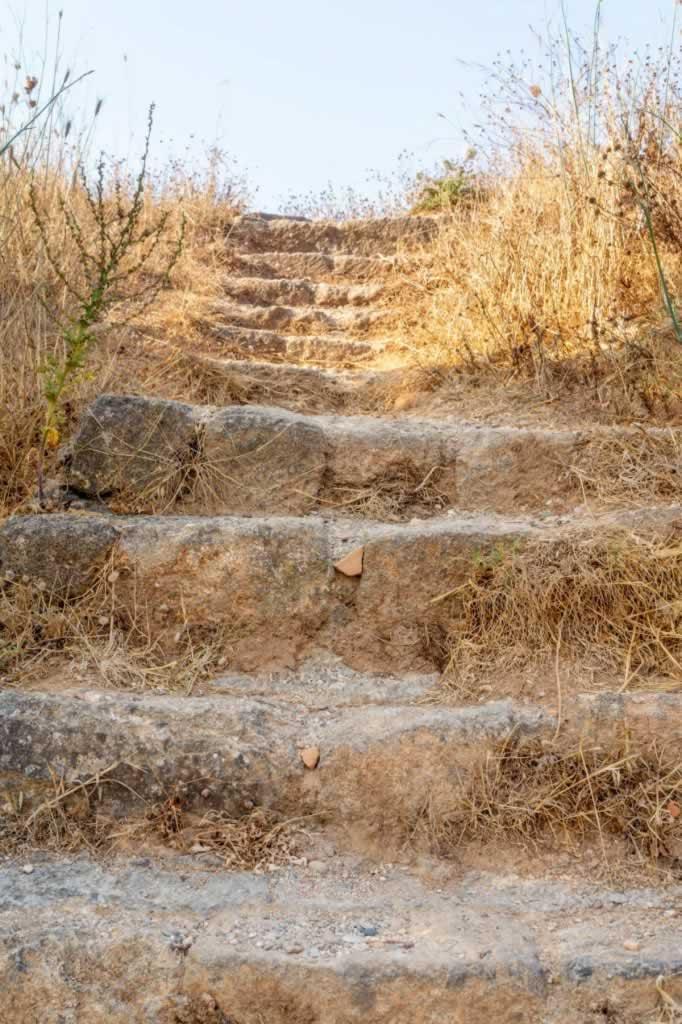 monte smith descent steps